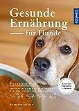 Gesunde Ernährung für Hunde: Fertigfutter oder selbstgemacht - gesundes Futter für jeden Hund...